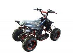 Petrol Racing Go Carts